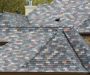 roofer in hernando